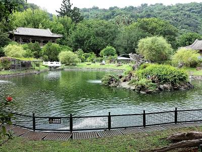 至善園の池2