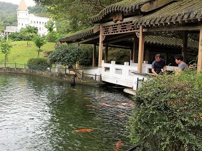至善園の池1