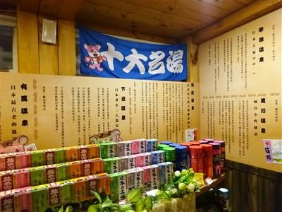 日薬本舗博物館の温泉の説明
