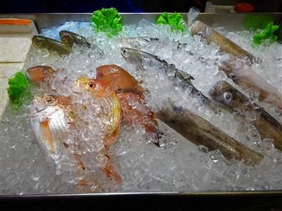 鮮定味生猛海鮮(錦州街店)の鮮魚