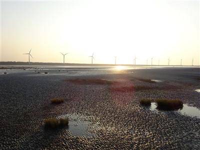 高美湿地の干潮時間