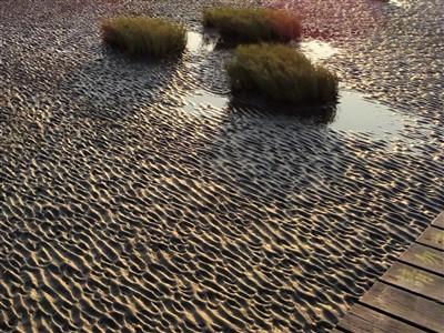 高美湿地の湿地帯の模様