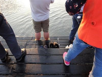 高美湿地の遊歩道の一番先は階段